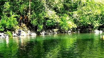 BEAUTIFUL RIVER NEAR SALEM OREGON
