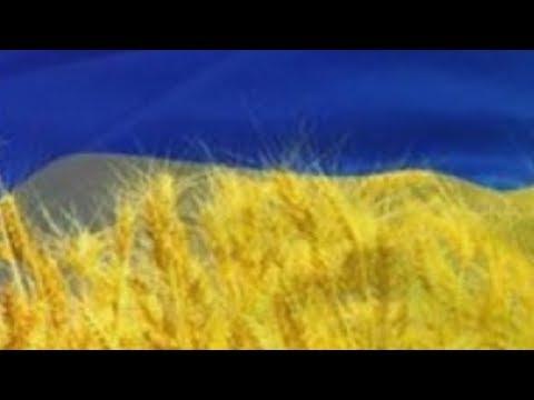Будущее Украины 2019-2023