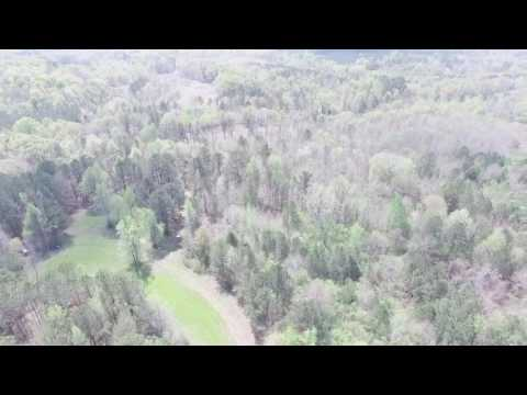 50 acres hunting land or home site-full video-Lapine, AL Crenshaw Co.