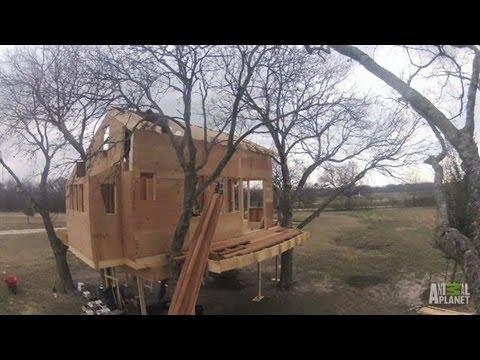 Waco, Texas Treehouse Timelapse | Treehouse Masters