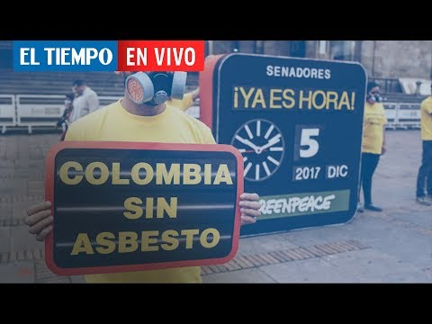 La ley contra el asbesto, una victoria de Ana Cecilia Niño | EL TIEMPO