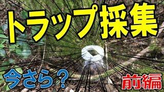 クワガタ&カブトムシ☆昆虫採集2017 ワクワク!トラップ採集してみまし...