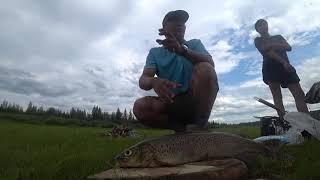 Рыбалка в Лээги Амга Якутия + солим рыбу