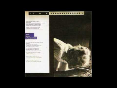 The Gerogerigegege ‎– The Sexual Behavior In The Human Male (Full Album)