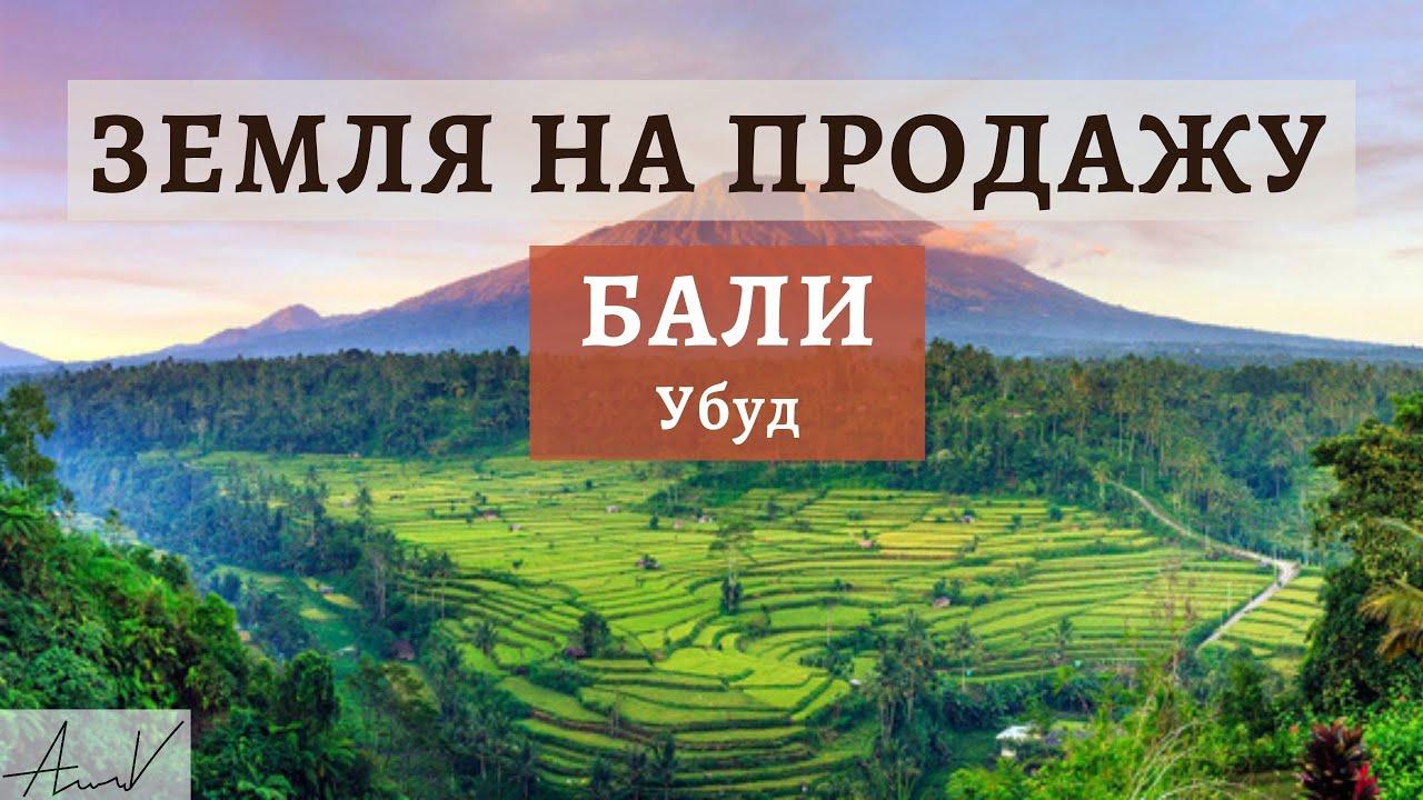 Купить землю на бали цены стоимость квартир в дубае в рублях