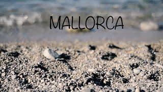 Mallorca trip 2016 | Paradís