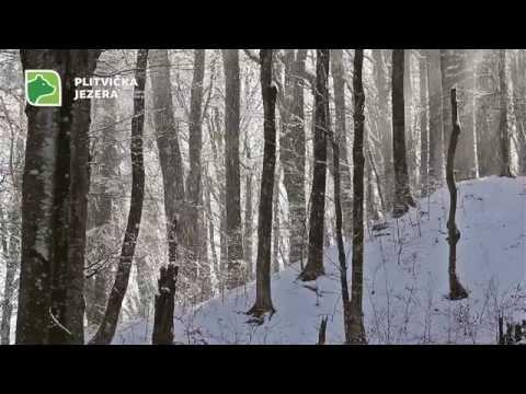 Plitvička Jezera....Zima 2014.