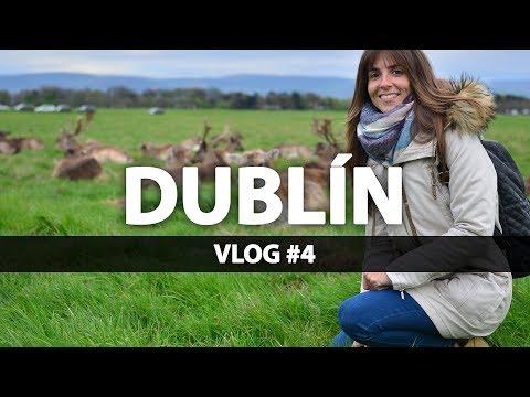 DUBLIN #4 | Buscando a los ciervos de Phoenix Park