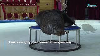 Морской лев и его дрессировщик отмечают в Петербурге 10-летие совместной работы