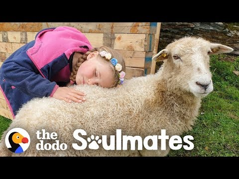 Girl And Her Sheep Have The Most Perfect Friendship | The Dodo