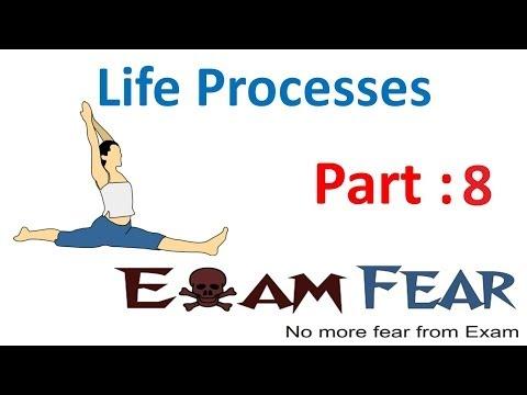 Biology Life Processes part 8 (Nutrition...