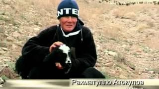 Село Кароджингил  Таджикистан