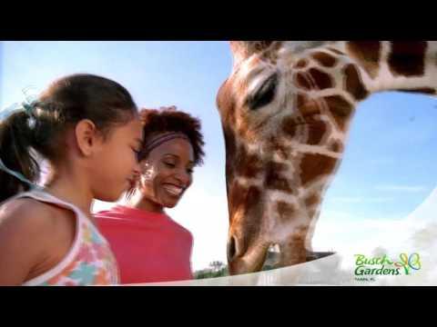 SeaWorld Parks & Entertainment All Parks