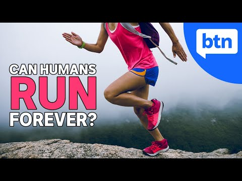 What's the Longest Distance a Human Can Run? The Science of Running