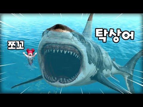 거대한 좀비 상어가 됐어요!! [다 잡아먹자!] 로블록스 탁주 쪼꼬
