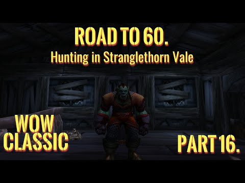 WoW Classic/Road To 60. Part 16./Hunting In Stranglethorn Vale