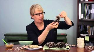 I Heart How To's: Making Pine Cone Bird Feeders
