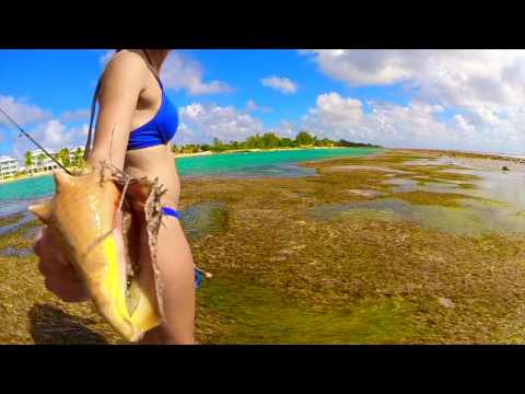 The Flats Variety: Cayman Islands