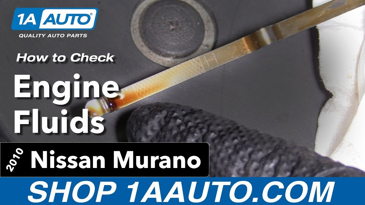 How to Check the Fluids 09-14 Nissan Murano
