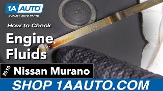 How to Check the Fluids 10 Nissan Murano