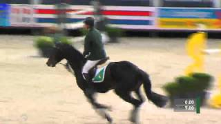 Talks Cheap, 7y old mare by Inspector X Colin Diamond at World Championship Young Horses Lanaken