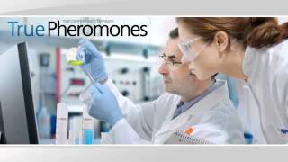 NO-SCAM Pheromone Policy - By True Pheromones