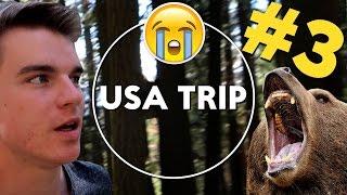 USA TRIP #3 - Medvěd a vykradené auto | KOVY