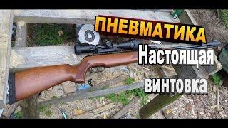 Пневматическая винтовка GAMO CfxRoyal / ТТХ, пули, стрельба и тюнинг