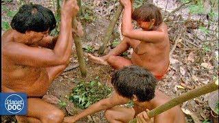 Inhabitants of the Amazon jungle (Tribes) - Full Documentary
