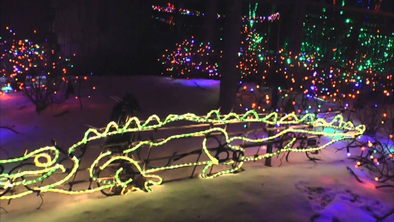 Lights Before Christmas Toledo Zoo - YouTube