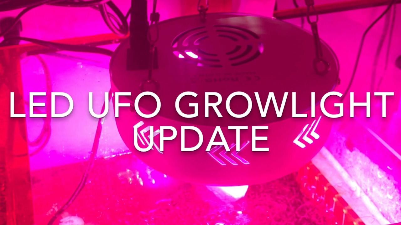 Refugium Led Grow Lights