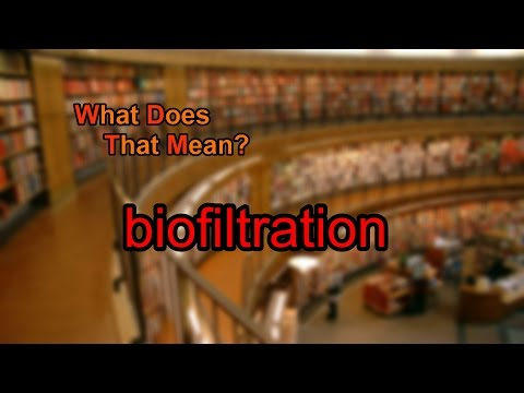 What does biofiltration mean?