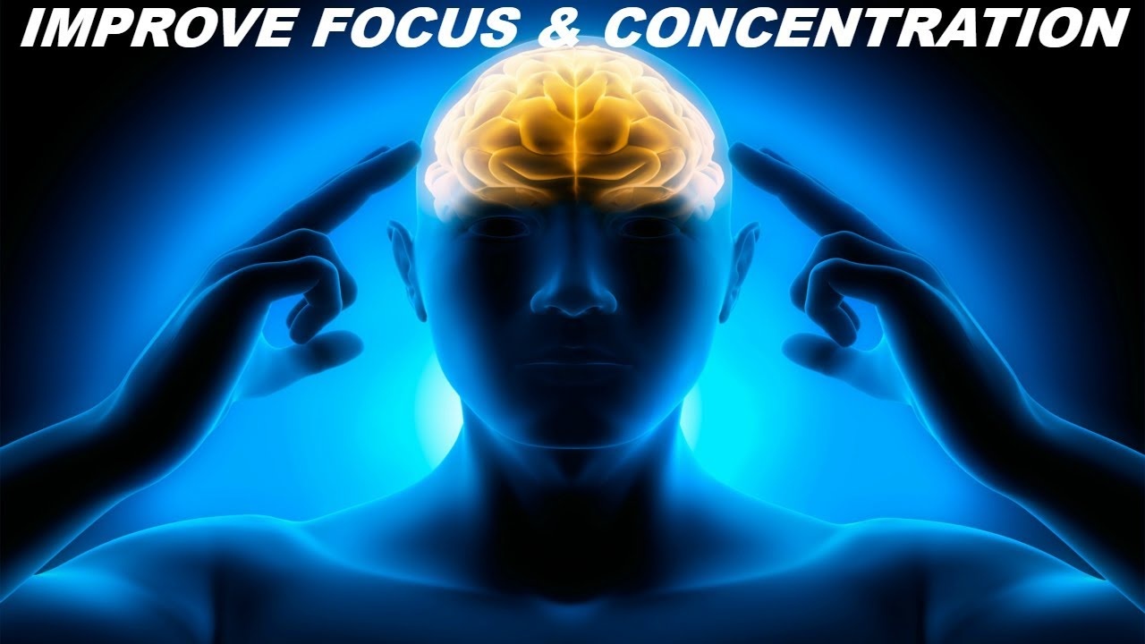 Foods good for concentration and memory image 4