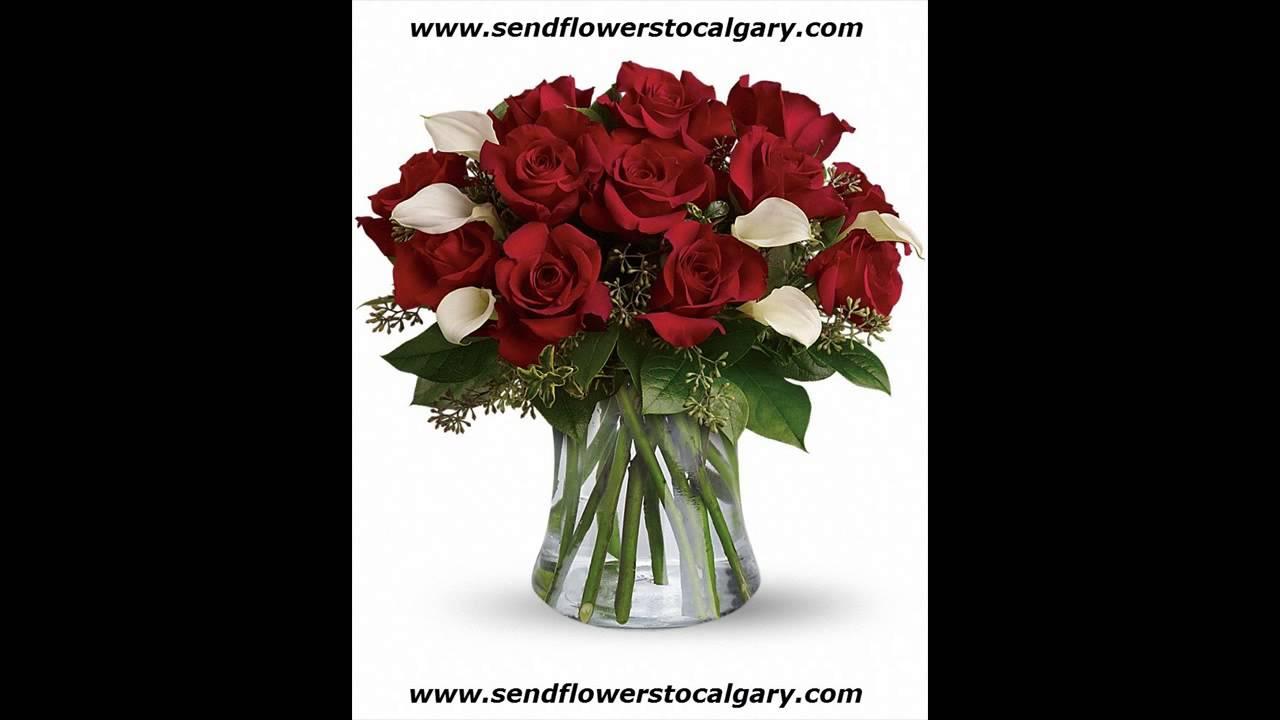 Calgary Safeway Flowers Youtube