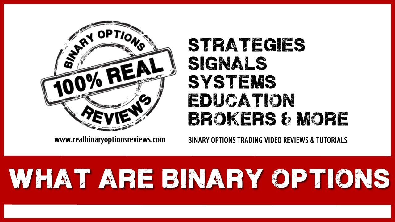 Full option trading company