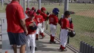 Dugout Organizer Baseball