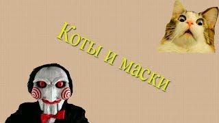 Коты и маски