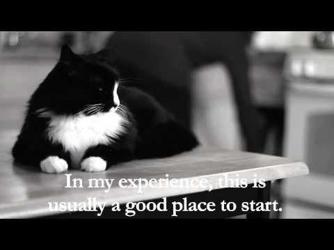 Henri - 'On Cat Food Boredom', Part 1 of 4