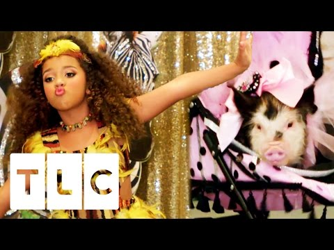 Animal Pageant Takeover   Toddlers and Tiaras