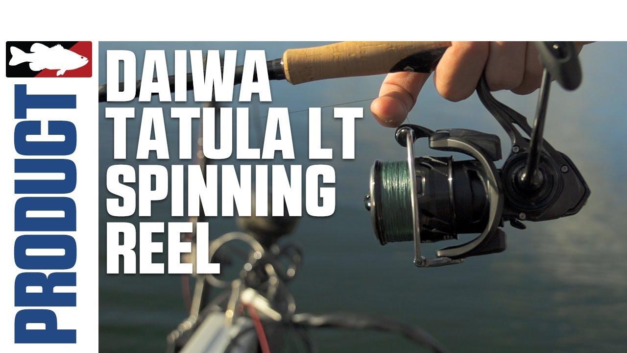 DAIWA LIGHT /& TOUGH TROUT FISHING FINESSE SPINNING REEL SILVER  CREEK LT