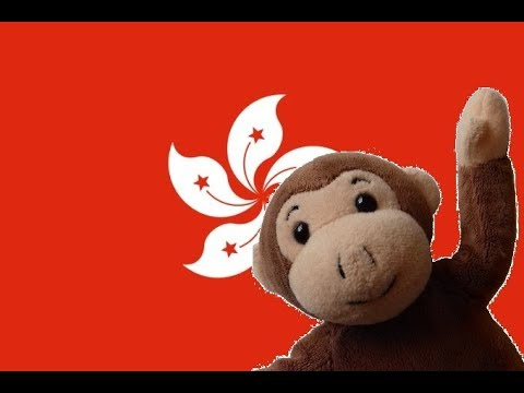 Globe Monkey goes to Hong Kong
