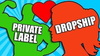 Dropshipping vs Private Label Ultimate Comparison - My Story