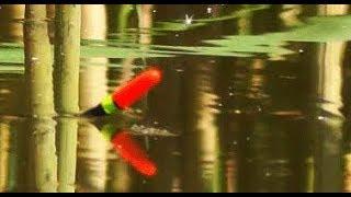 Веселая ПОКЛЕВКА КАРАСЯ на мормышку. Ловля карася на поплавок в камыше. Рыбалка, Fishing