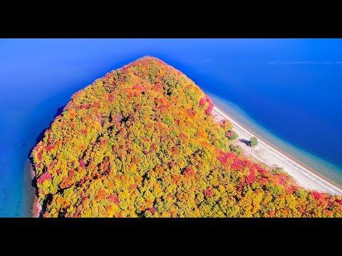 猪苗代湖の紅葉