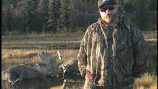 2 BULL MOOSE KILL EACH OTHER IN COMBAT thumbnail
