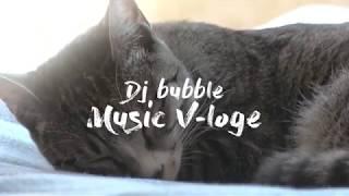 고양이 Music Vloge day1, 녀석은 잠만잔다.