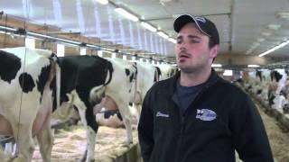 Les secrets du succès de la ferme Holdream