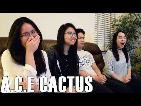 A.C.E (에이스) - Cactus (Reaction Video)