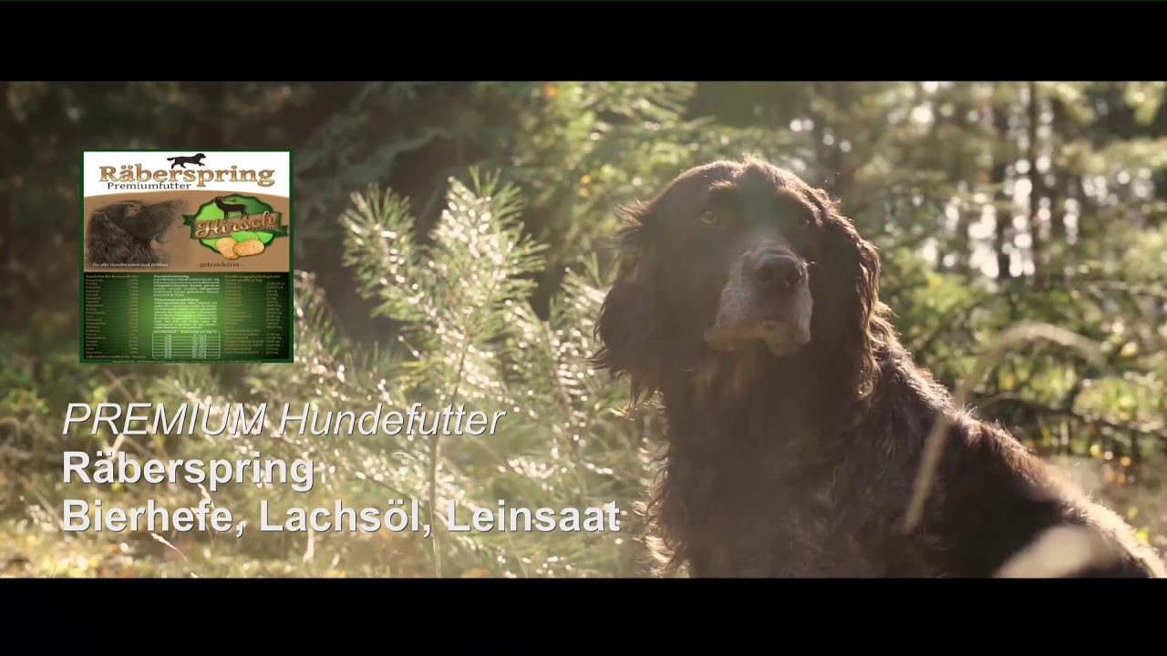Premium Hundefutter für Jagdhunde: Räberspring Hirsch und Kartoffel