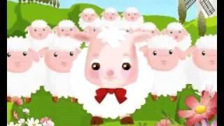 نشيد خروف العيد - ماء ماء خروفي خروفي